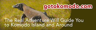 Go To Komodo Tour & Travel