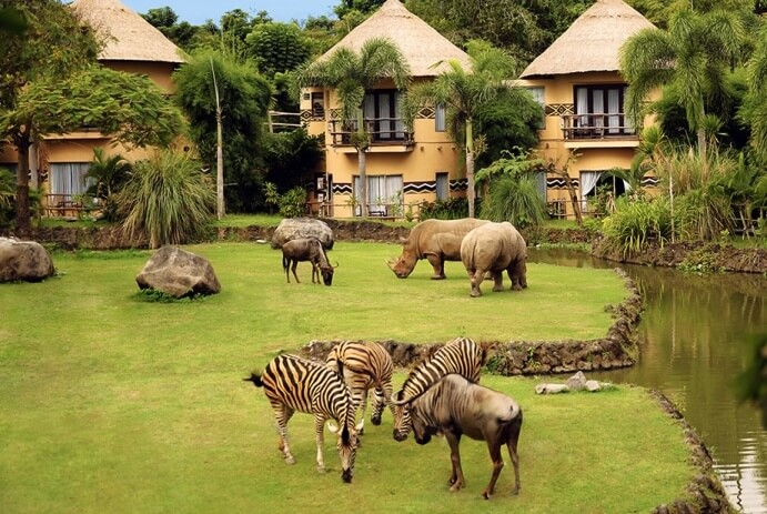 Mara River Safari Lodge Bali